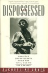 Dispossessed: America's Underclass from the Civil War to the Present - Jacqueline Jones