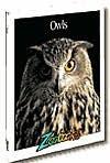 Owls - Timothy Levi Biel, John Bonnett Wexo