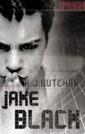 Jake Black (Spy High) - A.J. Butcher
