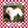 Bichons Frises - Julie Murray