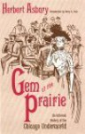 Gem of the Prairie: An Informal History of the Chicago Underworld - Herbert Asbury, Betty J. Craige