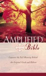 Holy Bible: Amplified Bible - Anonymous