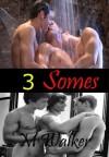 3 Somes: Seven Stories of M/M Erotica - Mercy Walker