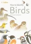 How to Identify Birds - Nicholas Hammond