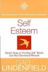Self Esteem: Simple Steps to Develop Self Worth and Heal Emotional Wounds - Gael Lindenfield