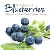 By Theresa Millang Joy of Blueberries: Nature's Little Blue Powerhouse The Joy of Blueberries Cookb - Theresa Millang