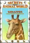Giraffes: Long Necked Ruminants - Andreu Llamas, Eulalia Garcia, Isidro Sánchez, Ali Garousi, Gabriel Casadevall