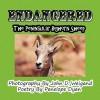 Endangered--The Peninsular Bighorn Sheep - Penelope Dyan