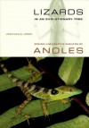 Lizards in an Evolutionary Tree: Ecology and Adaptive Radiation of Anoles - Jonathan B. Losos