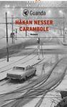 Carambole: Un caso per il commissario Van Veeteren - Håkan Nesser