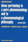 Ideas Pertaining to a Pure Phenomenology and to a Phenomenological Philosophy: Studies in Phenomenology of the Constitution (Husserliana: Edmund Husserl - Collected Works) - Edmund Husserl