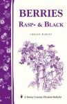 Berries, Rasp- & Black - Louise Riotte