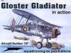 Gloster Gladiator in Action - Aircraft Number 187 - W.A. Harrison, Don Greer, Darren Glenn, Dave Gebhardt