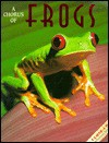 A Chorus of Frogs - Joni Phelps Hunt