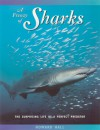 A Frenzy of Sharks: The Surprising Life of a Perfect Predator - Howard Hall, Vicki León