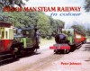 Isle of Man Steam Railway: In Colour - Peter Johnson