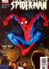 Amazing Spider-Man Vol 1# 518 - Skin Deep, Conclusion - Joseph Michael Straczynski, Mike Deodato Jr.