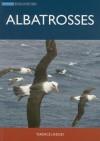 Albatrosses - Terence Lindsey