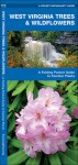 West Virginia Trees & Wildflowers: A Folding Pocket Guide to Familiar Species - James Kavanagh, Raymond Leung