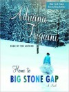 Home to Big Stone Gap: A Novel (Audio) - Adriana Trigiani