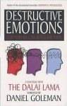 Destructive Emotions - Daniel Goleman
