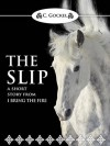 The Slip: A Short Story from I Bring the Fire - C. Gockel