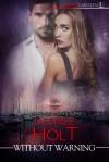 Without Warning (Vigilance) - Desiree Holt