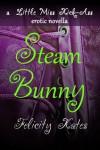 Steam Bunny (Little Miss Kick-Ass Erotic Novella #1) - Felicity Kates