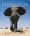Elephants - Tracey Rich, Andy Rouse