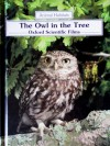 The Owl In The Tree (Animal Habitats Series) - Jennifer Coldrey