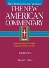 Hebrews: 35 (New American Commentary) - David L. Allen