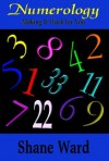 Numerology: Making It Work For You - Shane Ward
