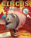 Circus Fantastico: A Magnifying Mystery - Molly Idle, Lynn Gordon