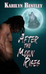 After the Moon Rises - Karilyn Bentley