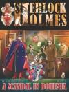 A Scandal in Bohemia - A Sherlock Holmes Graphic Novel - Petr Kopl