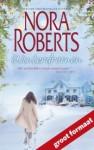 Winterdromen - Nora Roberts