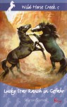 Lucky Star Ranch in Gefahr - Sharon Siamon, Albert Baier