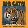 Big Cats - Patricia Corrigan, Gwenyth Swain
