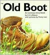 The Old Boot - Chris Baines