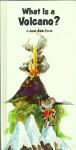 What Is A Volcano - Chris Arvetis, Carole Palmer