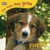 Puppy (See How They Grow Series) - Angela Royston, Jane Burton, Angela Laroyster
