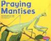 Praying Mantises (Pebble Plus: Bugs, Bugs, Bugs) - Margaret C. Hall