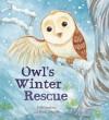 Winter with Owl - Anita Loughrey, Daniel Howarth