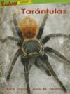 Tarantulas - Trace Taylor, Lucia M. Sanchez