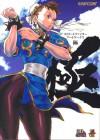 Sf25: The Art of Street Fighter - Capcom, Akiman, Kinu Nishimura, Bengus, Shinkiro, Ikeno