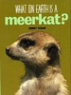 What On Earth Is A Meerkat? - Jenny E. Tesar