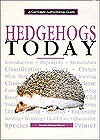 Hedgehogs Today - Dennis Kelsey-Wood