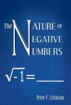 The Nature of Negative Numbers - Peter Erickson