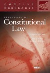 Nowak and Rotunda's Principles of Constitutional Law, 4th (Concise Hornbook Series) (Concise Hornbooks) - John E. Nowak, Ronald D. Rotunda