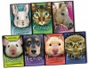 Holly Webb Set Magic Molly 6 Books Collection Pack Animal & Pets Story Pack (The Good Luck Duck, The Secret Pony, The Shy Piglet, The Wish Puppy, The Invisible Bunny, The Witch's Kitten) (Magic Molly Animal Stories Collection) - Holly Webb